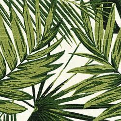 17225 Palms/ Moss