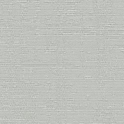 19065 Aura/Silver