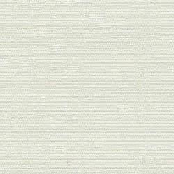 19066 Aura/Ivory