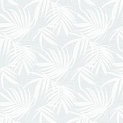 19081 Tropicali/White